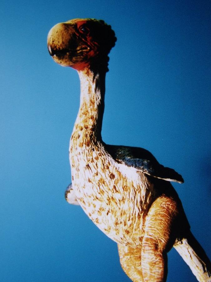 Gastornis reconstructie model dat gebruikt kan worden voor dierenparken, oermusea, geologische musea