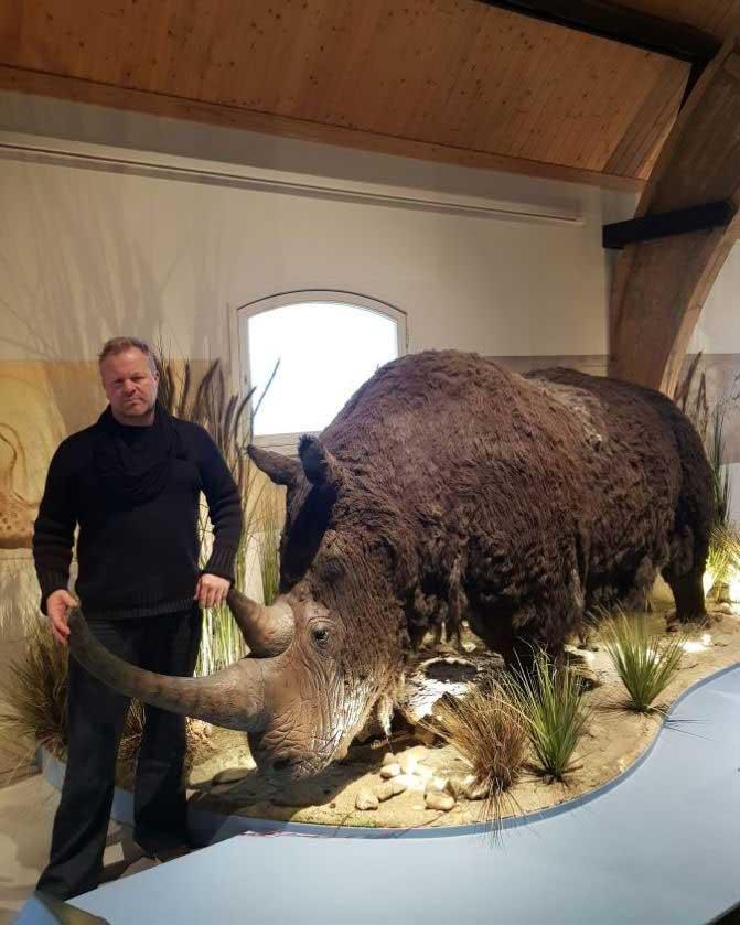 Wolharige neushoorn beeldhouwwerk life-size in opdracht voor dierenparken/bedrijven/educatieve doeleinden gemaakt door paleokunstenaar Jaap Roos